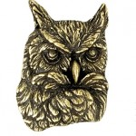Archimedes Owl Pin